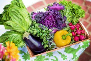 μαρούλι πιπεριά μελιτζάνα λάχανο που μπορούν να χρησιμοποιηθούν στην διατροφή ανάλογα με την ομάδα αίματος